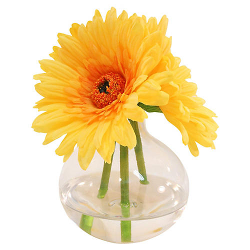 "7"" Gerbera Daisies in Vase, Yellow"