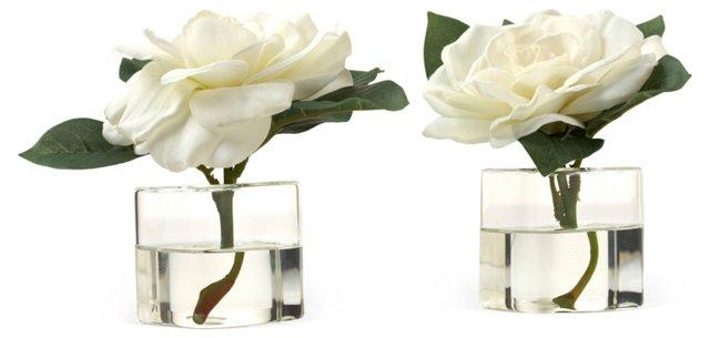 """S/2 5"""" Gardenia in Cube Vases, Faux"""