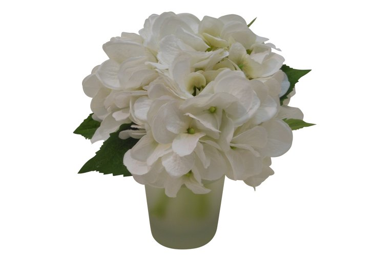 """8"""" Hydrangea in Frosted Vase, White"""