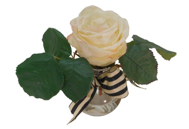 Ecuadorian White Rose in Rim Vase