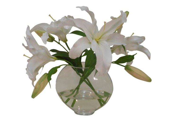 White Casablanca Lily in Flat Bowl