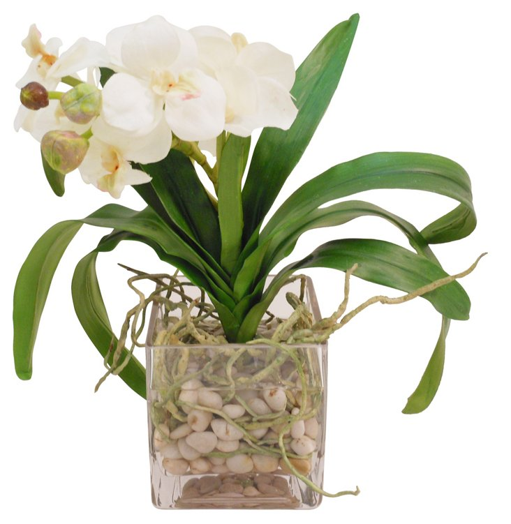 "16"" Vanda Orchid in Vase, Faux"
