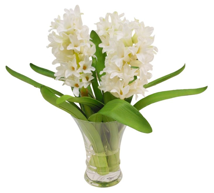 Hyacinth in Flared Vase, White