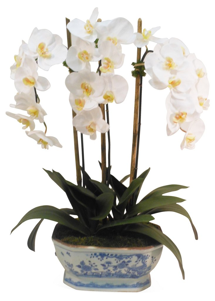 "29"" Orchid in Planter, Faux"