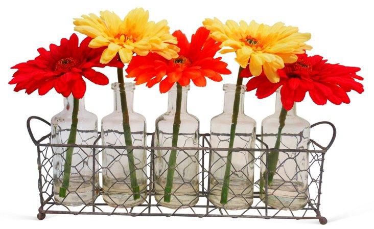 "8"" Gerber Daisies in Wire Basket"