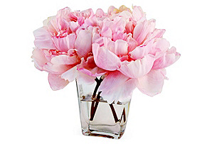 "9"" Peonies in Tapered Vase, Faux"