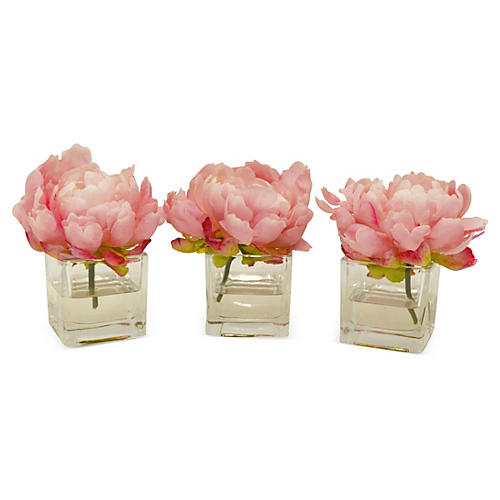 "S/3 6"" Peonies in Cubes, Faux"