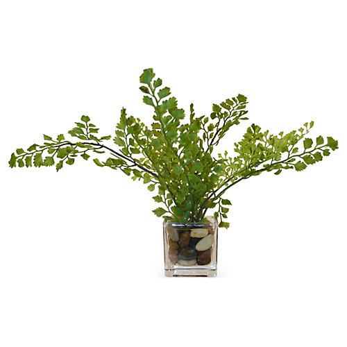 "13"" Maidenhair Fern in Cube Vase, Faux"