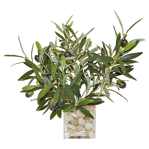 "12"" Olive Branches in Cube Vase, Faux"