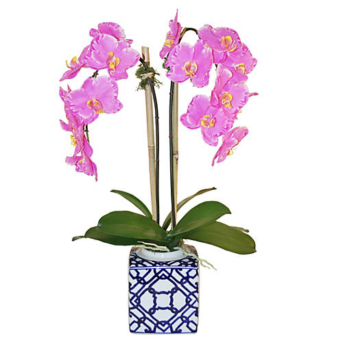 "27"" Phalaenopsis Arrangement, Faux"