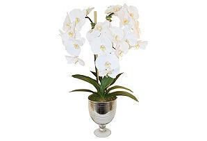 """30"""" Phalaenopsis in Urn, Faux*"""