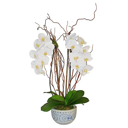 "33"" Orchid Arrangement in Vase, Faux"