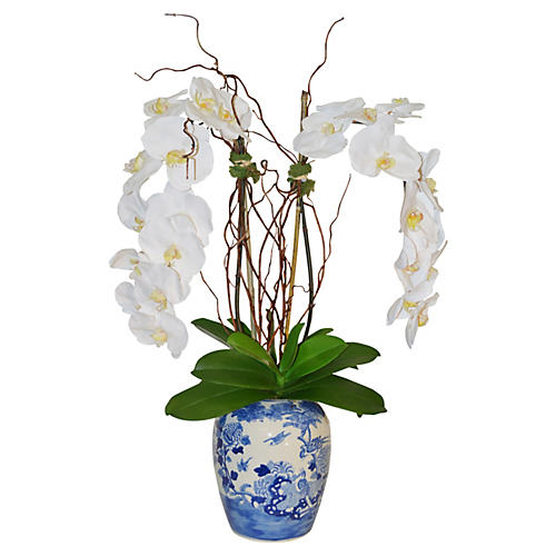 """33"""" Phalaenopis Orchids in Vase, Faux"""