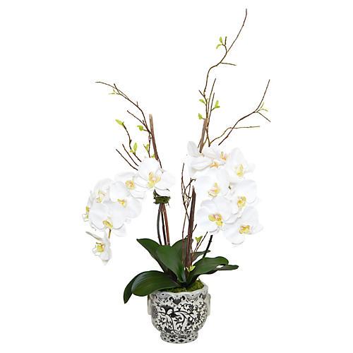 """35"""" Phal Orchid Arrangement, Faux"""
