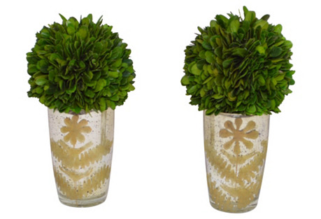 S/2 Green Boxwood Balls, Preserved