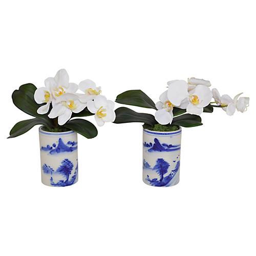 """S/2 11"""" White Orchid Arrangements, Faux"""