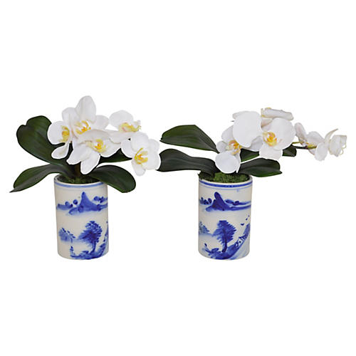 "S/2 11"" White Orchid Arrangements, Faux"