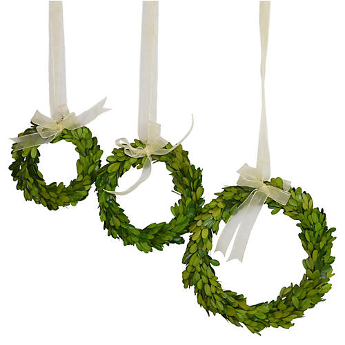 S/3 Boxwood Wreaths, Preserved