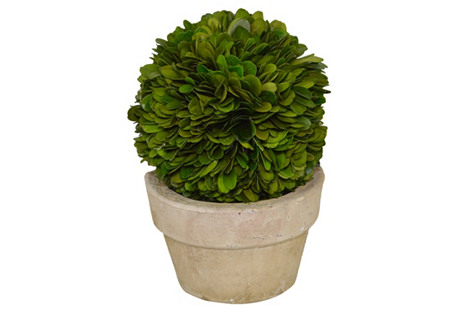 one kings lane greenery plant decorative accessories