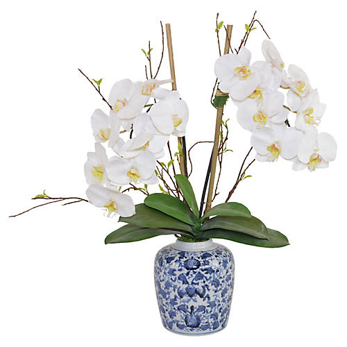 "20"" Moth Orchids in Vase, Faux"