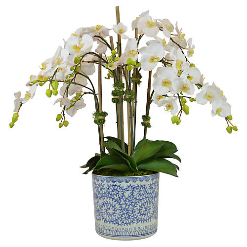 "31"" White Orchids in Vase, Faux"