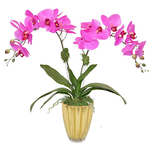"21"" Francis Phal Orchid Plant, Faux"