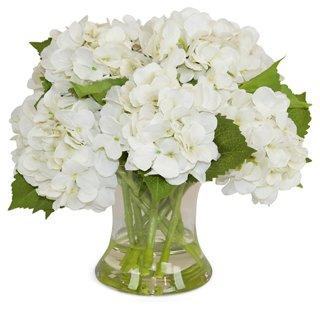 Florals Header Image