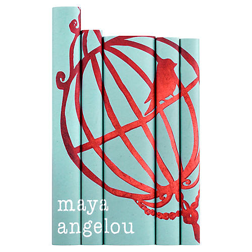 Asst. of 5 S/5 Maya Angelou Set Books