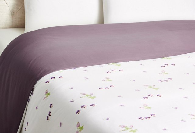 Miombre Duvet, Figue