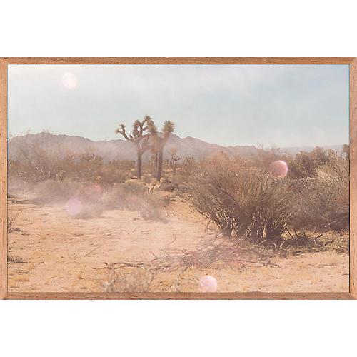Mystic Desert, Sabina McGrew