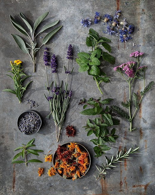 While Star Bright Farm's main crop is lavender, it also grows a plethora of other herbs to keep the family's herbal business growing.