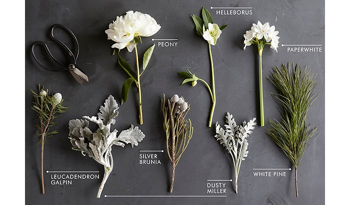 Stunning winter flower arrangements floral kit meghan broke down the elements of the arrangement below to make creating one of your own easy take this guide to your florist to have them make mightylinksfo