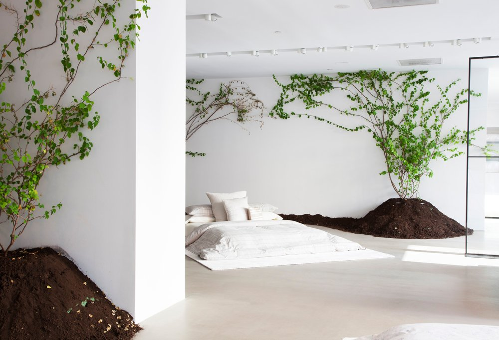 The Calvin Klein Home showroom now, with live trees and plenty of dirt installed alongside the pristine bedding collections shown on low Japanese-style beds.
