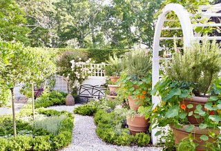 6 Game-Changing Tips for Creating Your Dream Garden