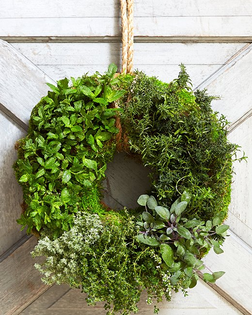 Patio Herb Garden Idea: 3 Inventive Herb Garden Ideas