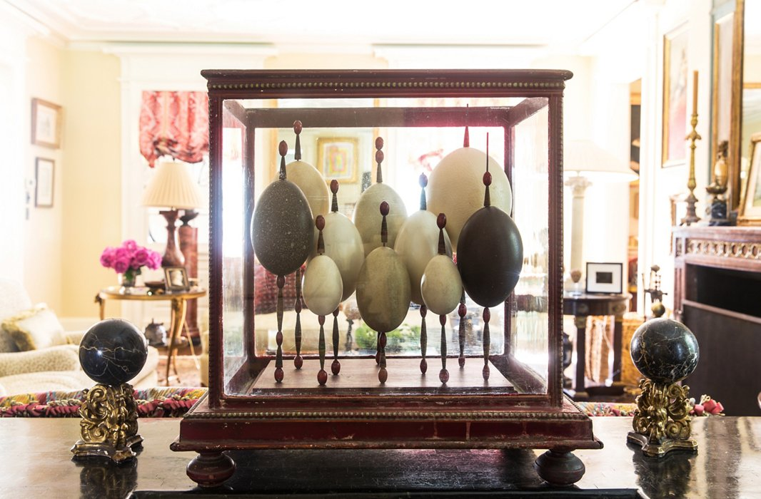 "Early 19th-century Europeans traveling to far-off places would bring home eggs laid by native birds and display them in glass boxes. ""This symbolizes all the things I really love: traveling, learning, and exploring."""