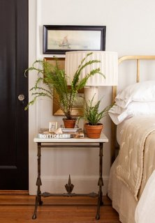 Plants On Books In Front Of Lamps In Front Of Wall Art Makes For A Rich