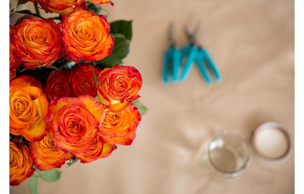 Before placinga bouquet of roses in a vase, consider trimming some to be shorter than others so that the arrangement looks fuller and more rounded, with each flower getting its due.