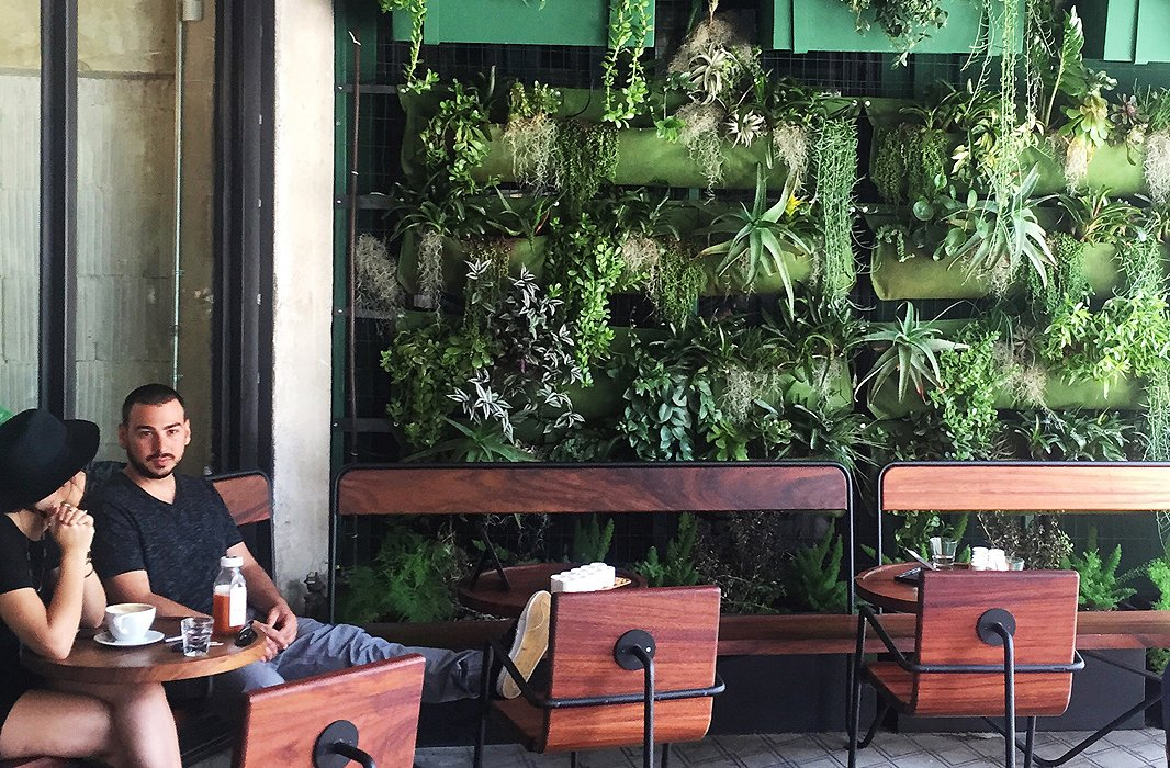 Though Verve Coffee Roasters is a little further afield—found in Downtown L.A.—it's worth a stop if only to stare in wonder at its awe-inspiring living wall.