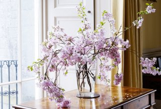 The Chicest Designers Reveal Their Favorite Flowers