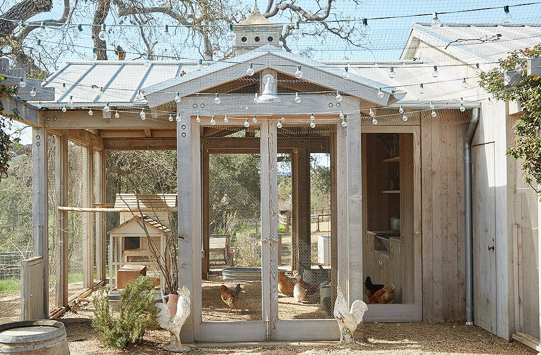"The chicken coop is framed in wood and walled with open mesh. ""Champagne grapevines climb one wall, providing shade as well as a tasty treat for the chickens,"" says Brooke."