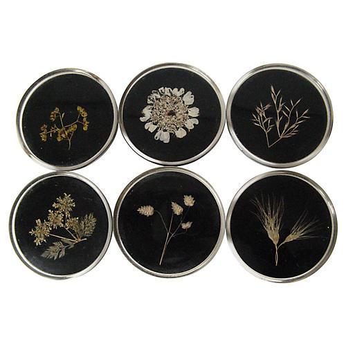 Pressed Botanical Coasters