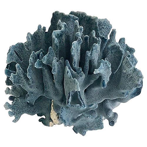 Natural Blue Coral Fragment