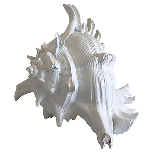 Large Resin Shell