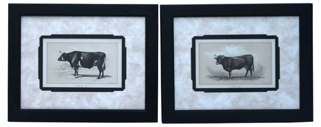 Cattle Prints, Pair