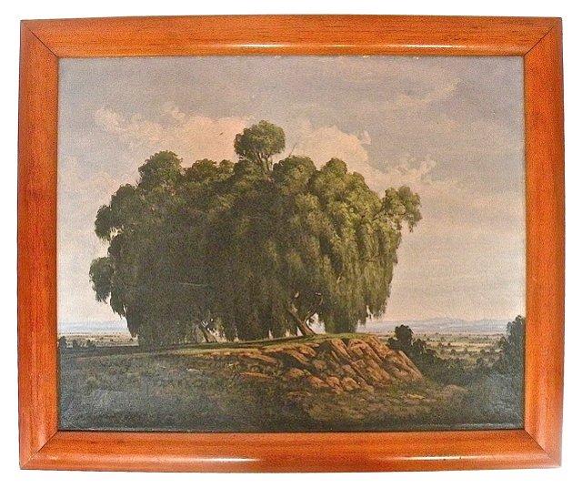 Tree on Mesa, Oropeza, Signed