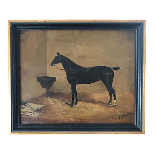 Antique Portrait of a Horse J.Tunnard
