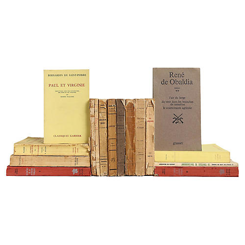 Distressed French Paperbacks,S/15
