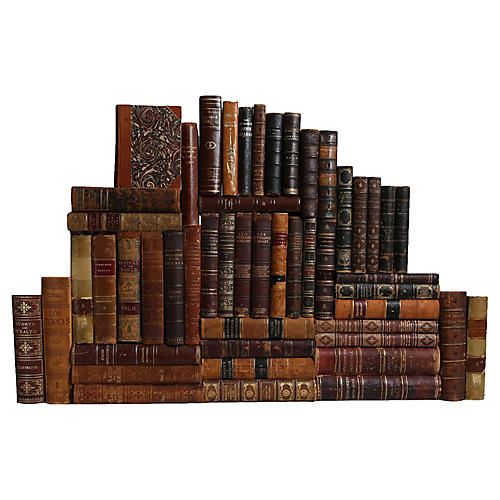Weathered Leather Book Wall, S/50