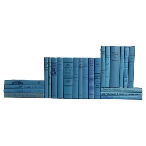 Midcentury Sky Blue Book Set, S/23